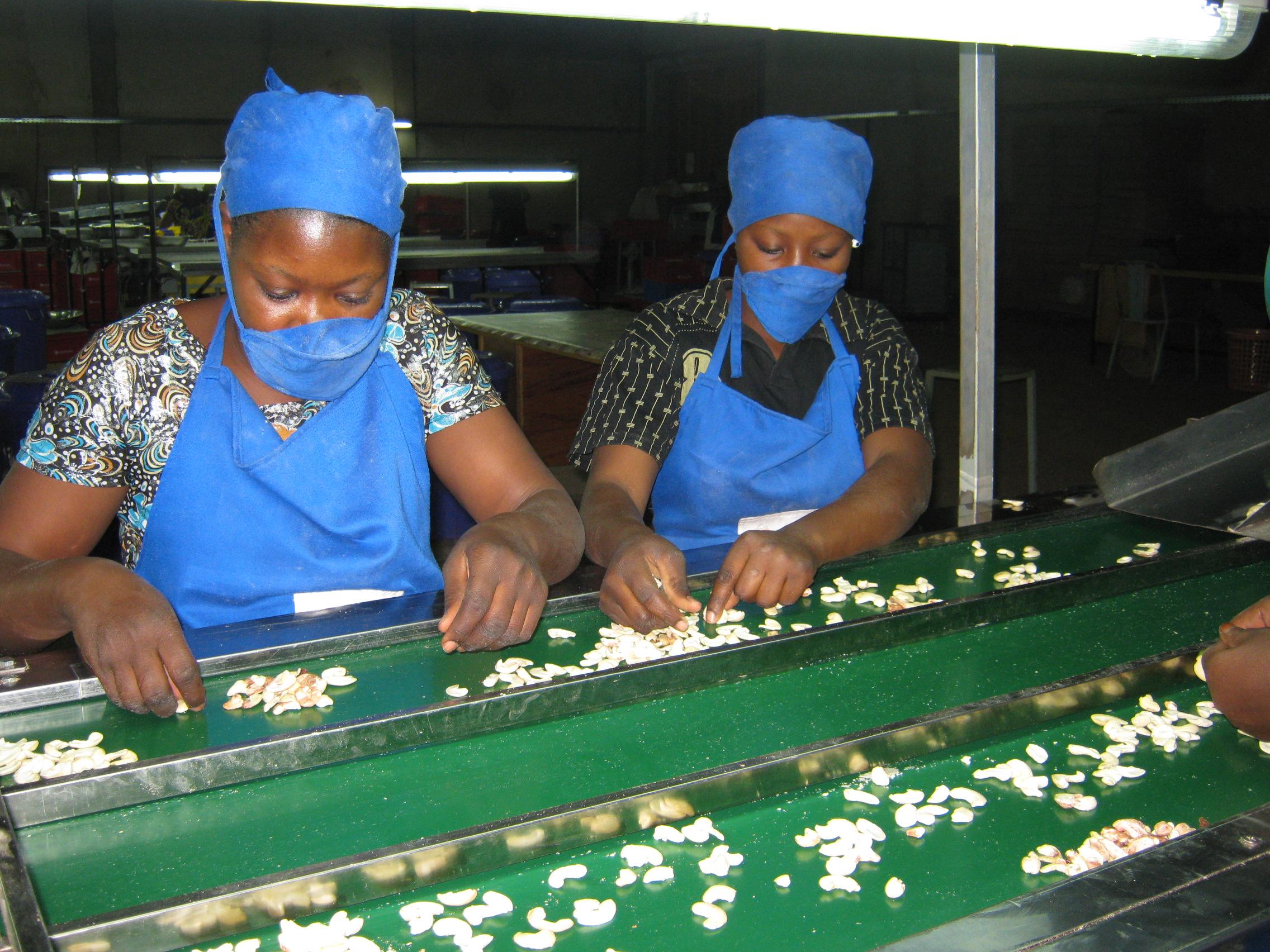 Factory Africa