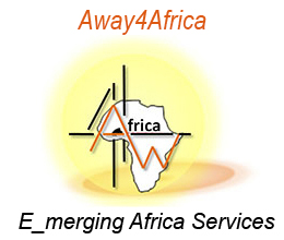 E_merging African services